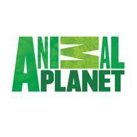 ANIMAL PLANET ������